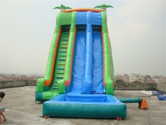 Inflatable Tropical Water Slide