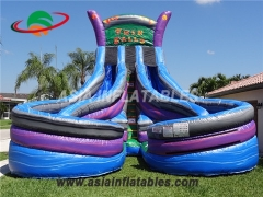 inflatable twin falls water slide with double lane for sale