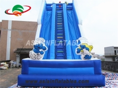 cartoon theme inflatable water slide