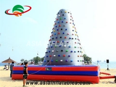 Exciting Fun Popular Indoor Inflatable Rock Climbing Wall For Healthy Sport Games in Factory Price